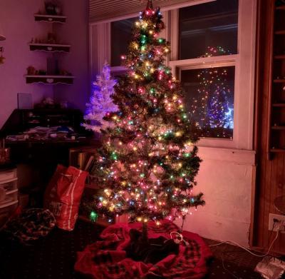 Is Christmas Pagan?